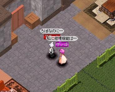 SIM0005.jpg